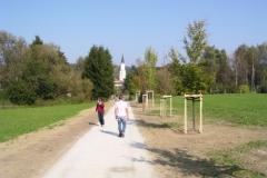 Buergerpark Ginkgo-Allee