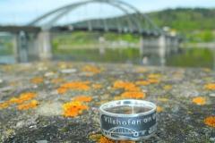 Vilshofen-Ring Donau Marienbrücke