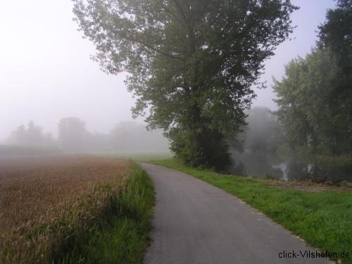 Donauradweg am frühen Morgen