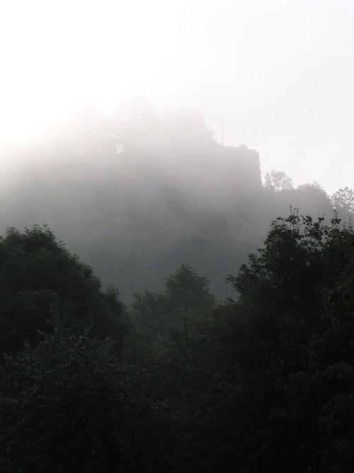Donauradweg am frühen Morgen, Hilgartsberg
